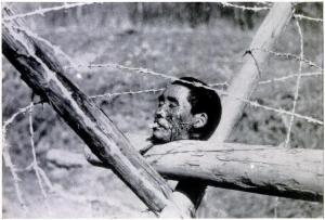 Chinese_head,_Nanking_massacre